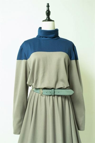 Turtleneck Bicolor Dress